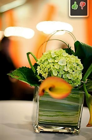 best catering near me | eggwhites catering miami bar decor