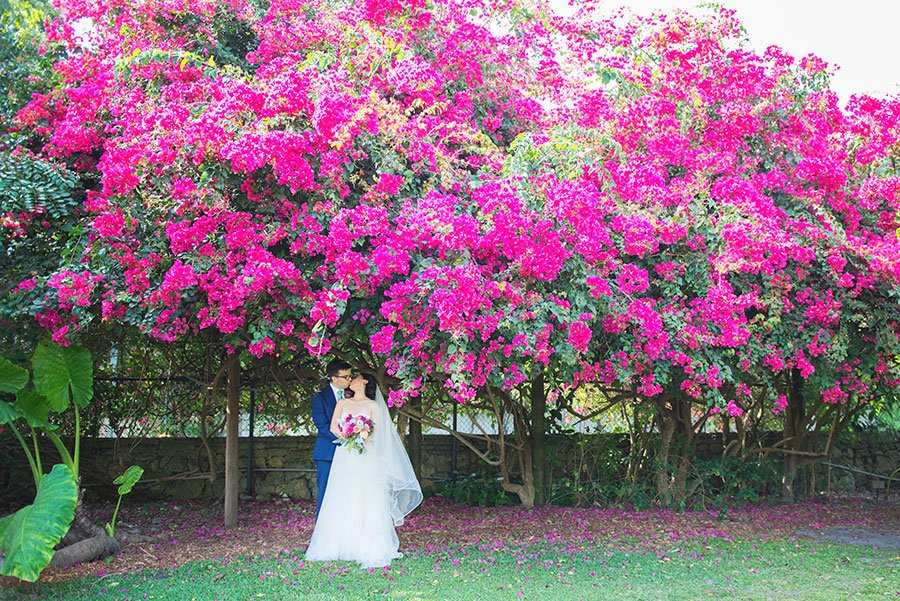 Couple under the bougainvillea at Fairchild Tropical Garden wedding