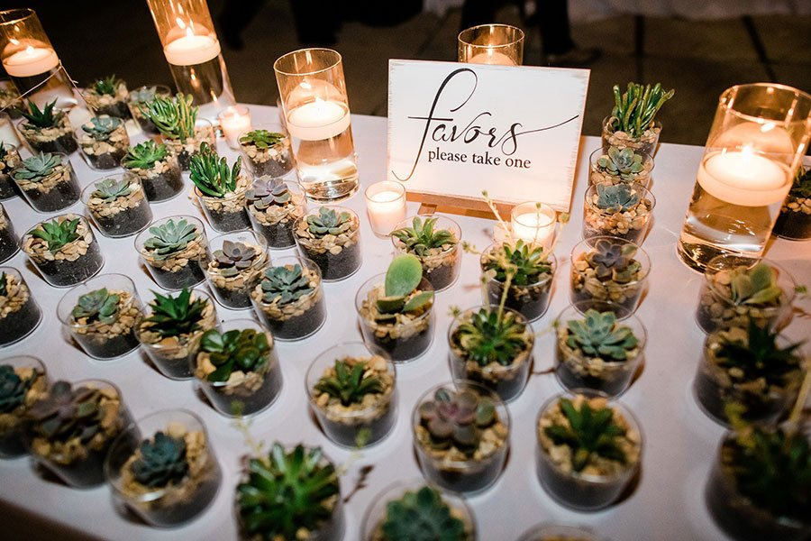 Wedding Favors | Succulents | Miami Beach Botanical Garden wedding reception